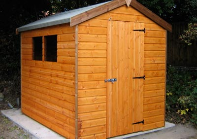 standard apex garden shed